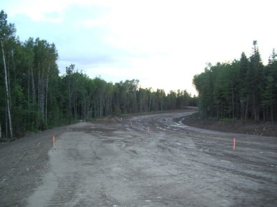 Road through UNB Woodlot